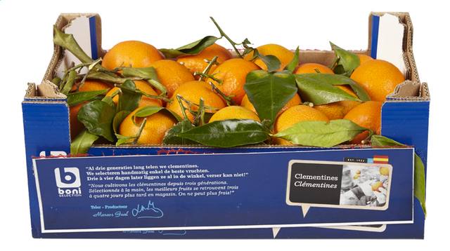 Clementines 2,5kg