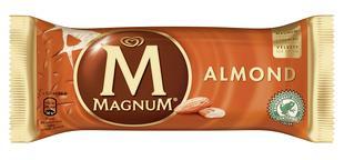 Magnum Almond 120mlx20
